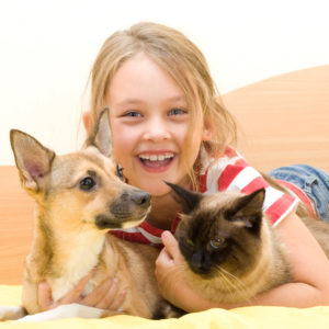 Essential Oils for Pet Care